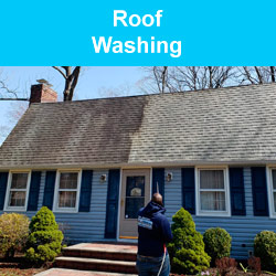 Roof Washing